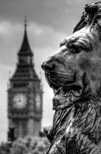 Trafalgar Square Lion London Photo Walks