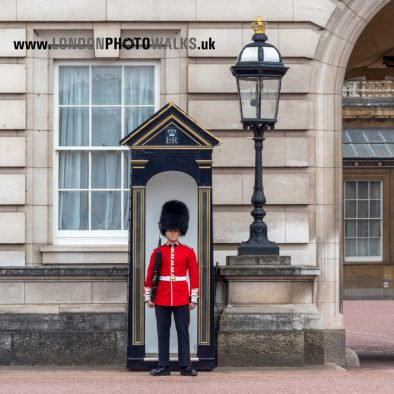 Guard at Buckingham Palace London Photo Walks