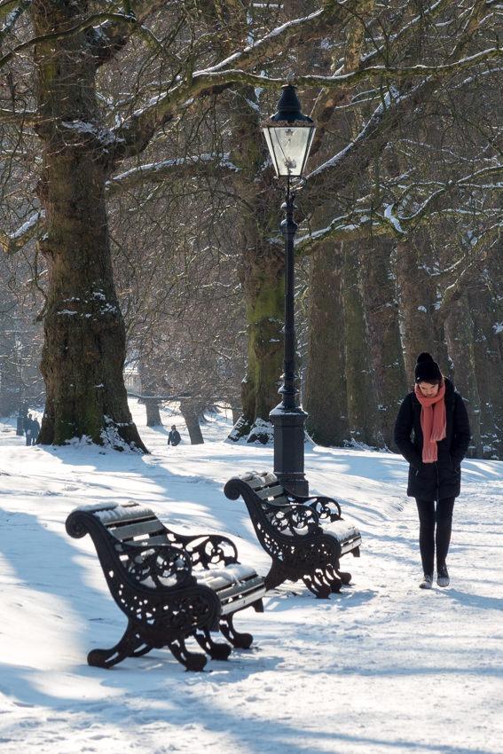Snowy morning in Green Park London