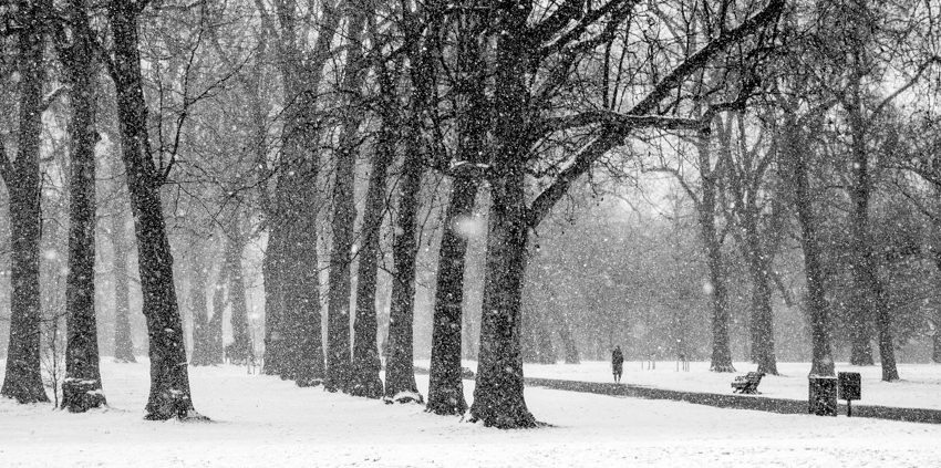 Snowfall in Hyde Park Black & White